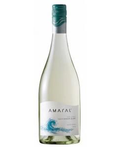 amaral-sauvignon-blanc-2008 (1)