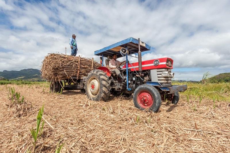 El 40% de la producción de alimentos se desperdicia a nivel global segun un informe de WWF Tesco. Antes era solo el 33% y contribuye según el estudio, con el 10% de todos los gases de efecto invernadero. (Foto gentileza WWF)