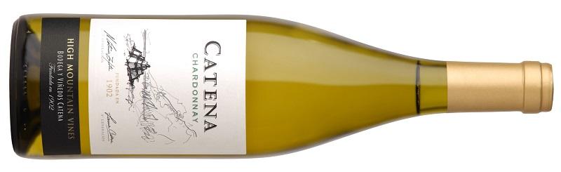 Catena Chardonnay bodega y viñedos
